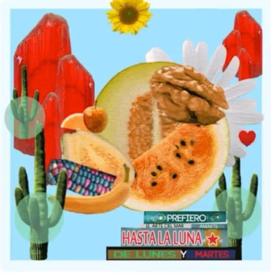 Collage with images of cacti, fruit and sunflowers.